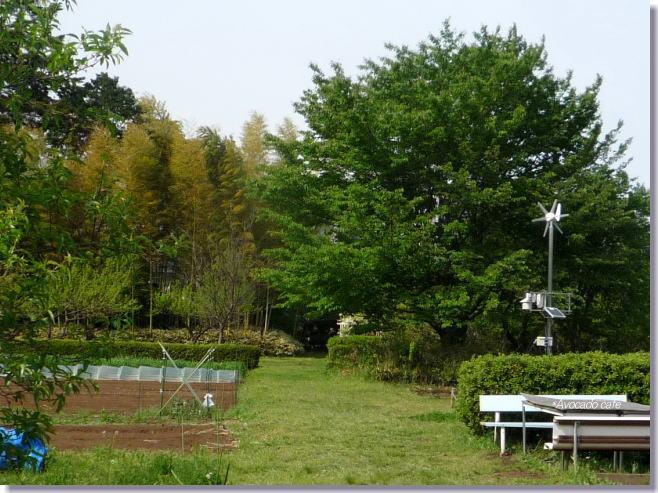 農園カフェ