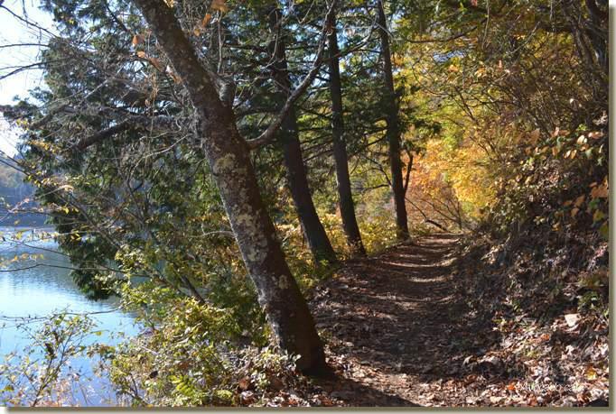 湖畔の道1