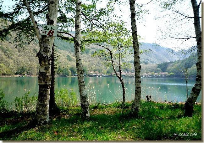 四尾連湖の春