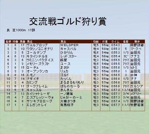 第5レース ゴルド狩り賞