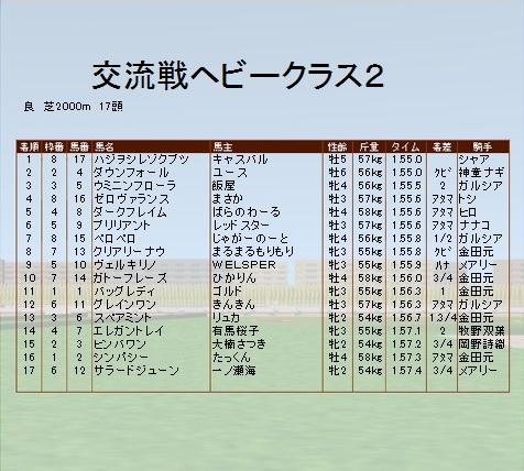 第7レース ヘビークラス2