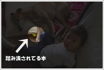 20131001_6.jpg