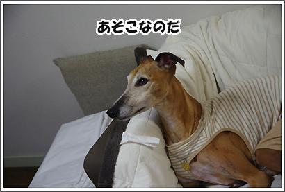 20131007_5.jpg