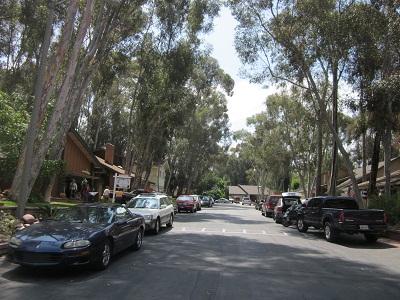 木立の住宅街Lake Forest