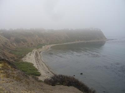 霧の海辺 2