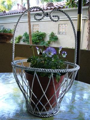 アイアン鉢