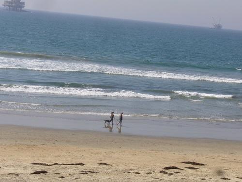 ドックビーチ