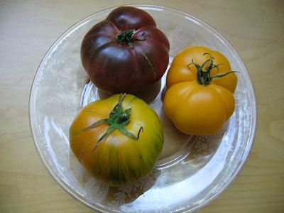 エアールームトマト
