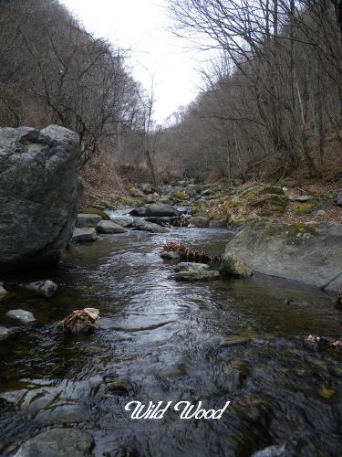 ダム上の流れ