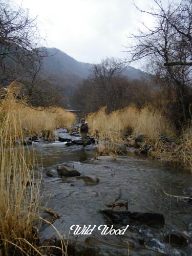 ダム下の流れ