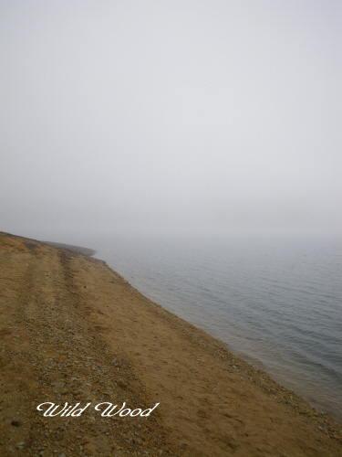 霧に包まれた野反湖