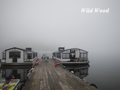 霧に包まれた早朝