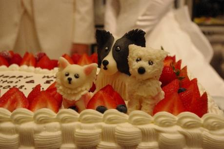 ケーキの上に