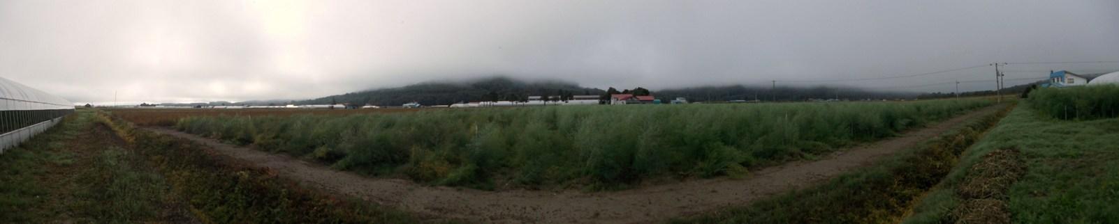 20140912_朝の上名寄_180°パノラマ