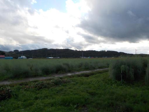 20140917_流れる雲