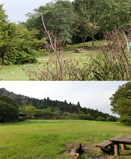 金丸公園キャンプ