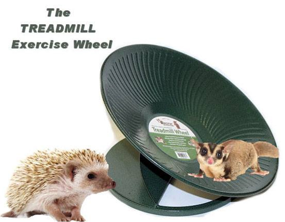 TREADMILL Exercise Wheel