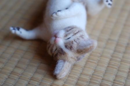 作家猫ー2