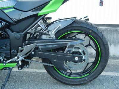 ninja250 (6)
