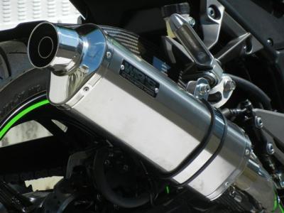 OV4250JM (100)