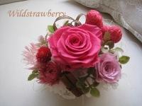 IMG_2511_20131108201850ef8.jpg
