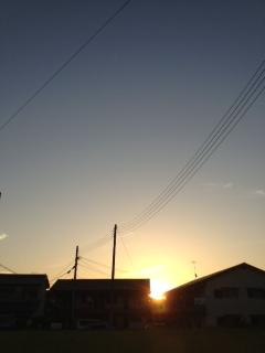 写真 1 (16)