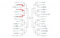 tournament2.png
