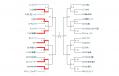 tournament7.png
