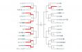 tournament8.png