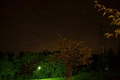DSC_0125ハッポウ夜