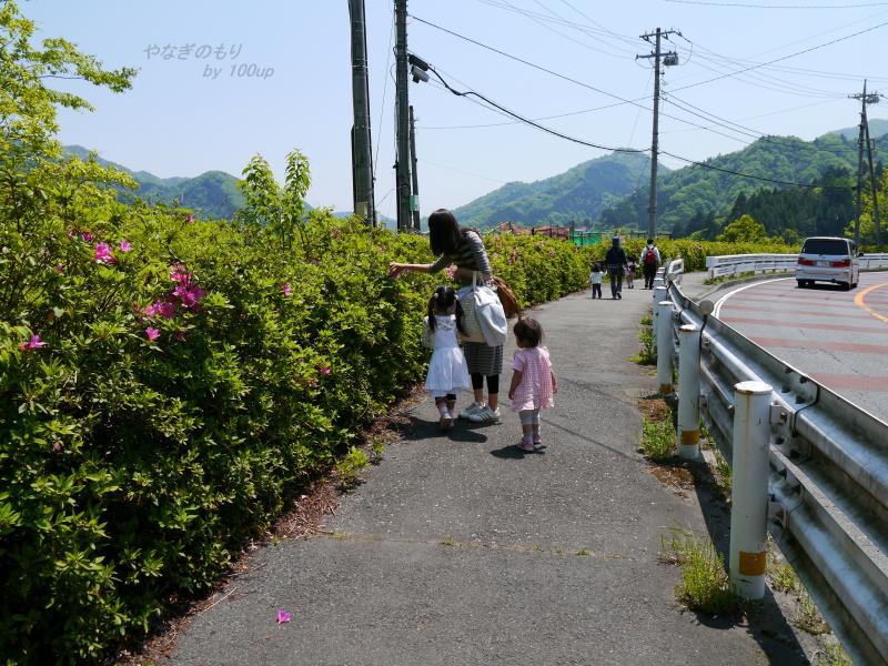 2013,5,5宮ケ瀬ダム-2