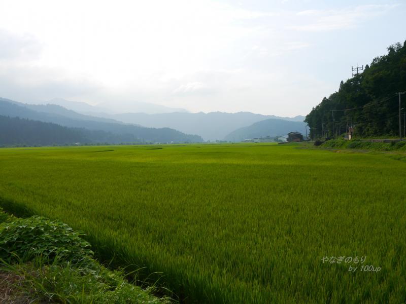 2012,8,12新潟県-4