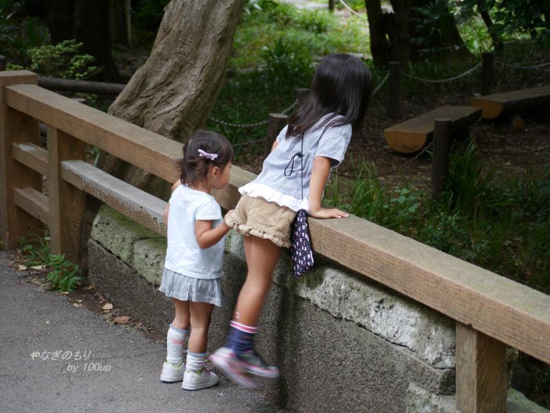 2013,9,23上野動物園2