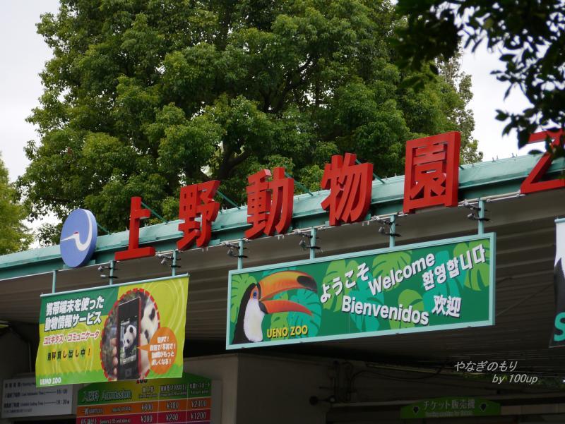 2013,9,23上野動物園.