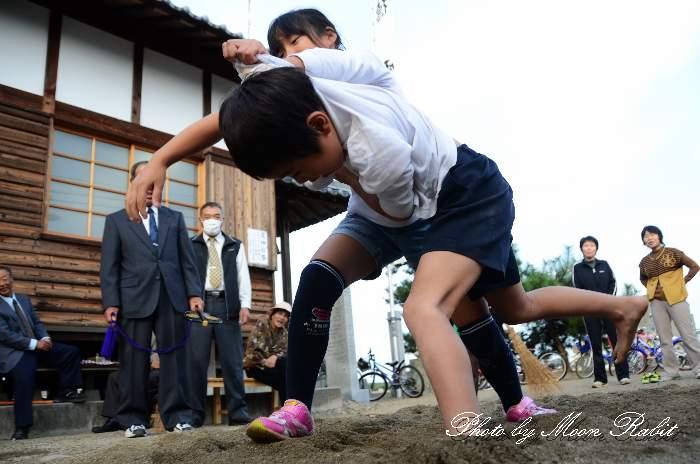子供相撲 禎瑞荒神社祭 愛媛県西条市八幡