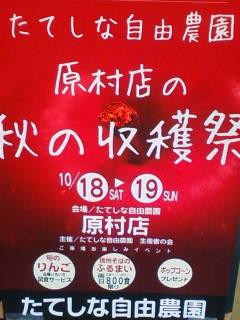20141018131555.jpg