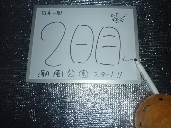 P1080009_convert_20130408183225.jpg