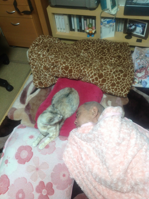 るびーがサトシさんを慰める。