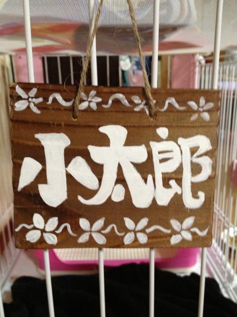 小太郎ちゃんの表札作りました。