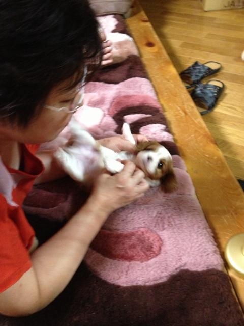 小太郎とたわむれています。(笑)