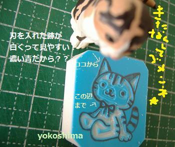 2013 5猫さんナビ3