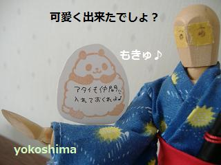 2013 5カクカクさんとパンダ3