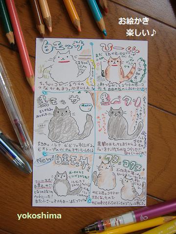 2013 5近所ネコ図