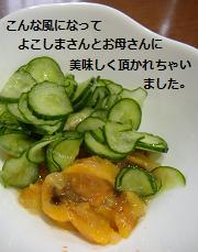 2013 5ホヤ北海道2