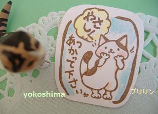 2013 6やさしくネコ2