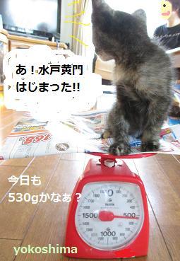 2013 0906水戸黄門