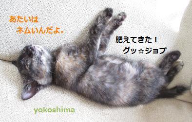 2013 0911ねむい