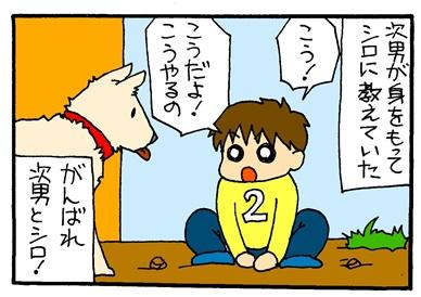 シロと次男-crop04