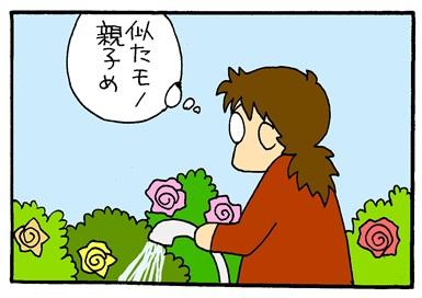 ジュリアスローズ-crop04