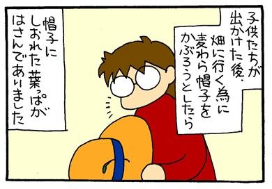 麦わらぼうし-crop01